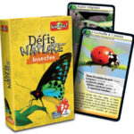defis nature insectes